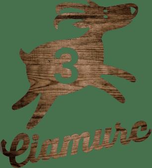 Logo Apartment